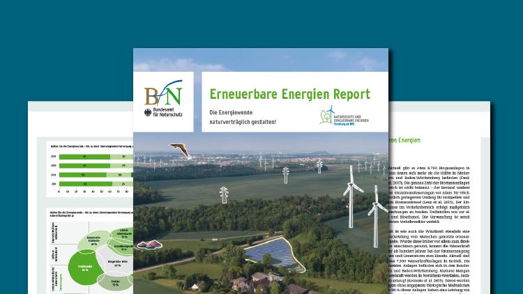 Titelseite des EE-Reports