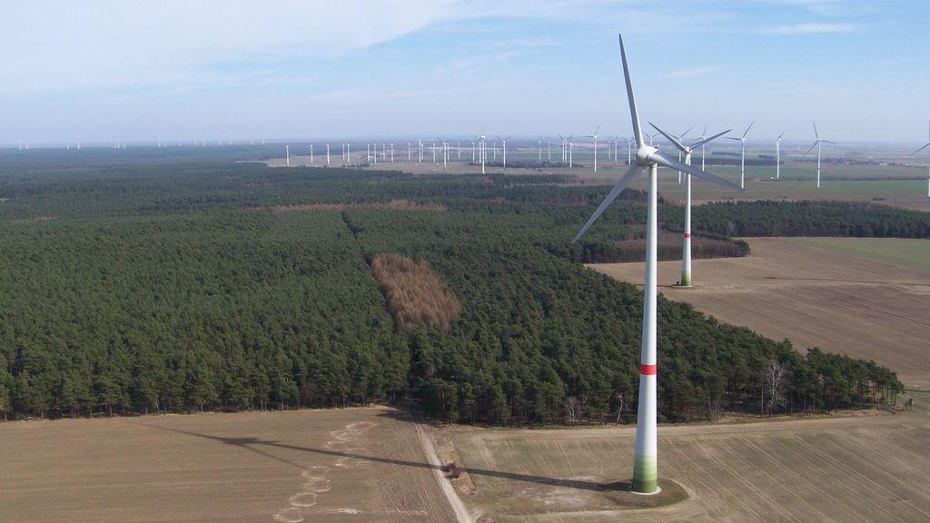 Aus der Luft: Eine Landschaft mit Wald, Feldern und Windrädern
